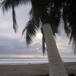 Costa Rica Beaches Jaco