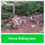 Horseback Riding Costa Rica Tour