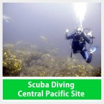 Scuba Diving Jaco Beach Costa Rica